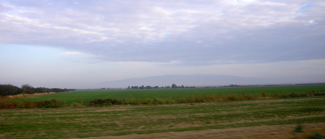 Argentine Mesopotamian grasslands